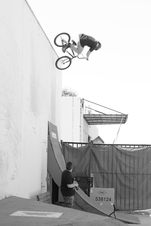 Ricky Moseley Vert Wall