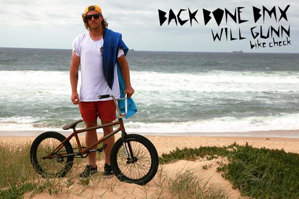will_bikechecksmall
