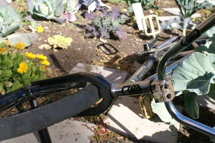 jeff-wescott-bmx-bike-check-mutiny-bikes-comb-front