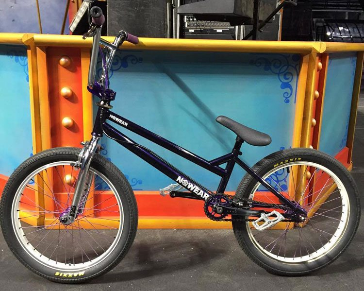 mike-dinello-bmx-bike