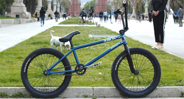 Emile Bouwman BMX Bike Check Shadow Conspiracy Subrosa