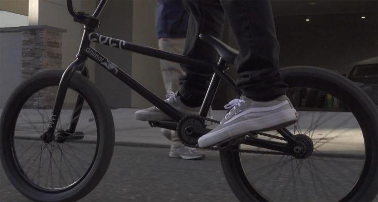 Animal Bikes – Chase DeHart Thorofare Sprocket Promo
