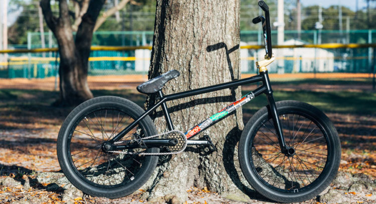 Subrosa Brand Jabe Jones BMX Bike Check