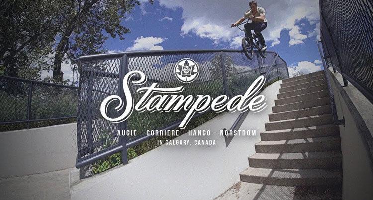 Fit Bike Co. – Stampede