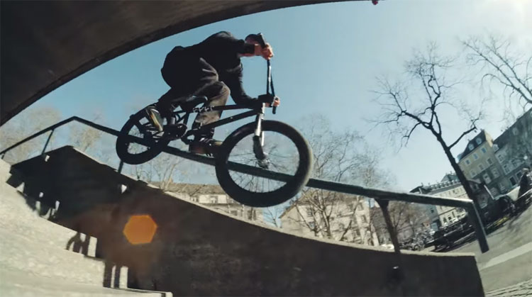 Animal Bikes Jo Gass 2019 BMX