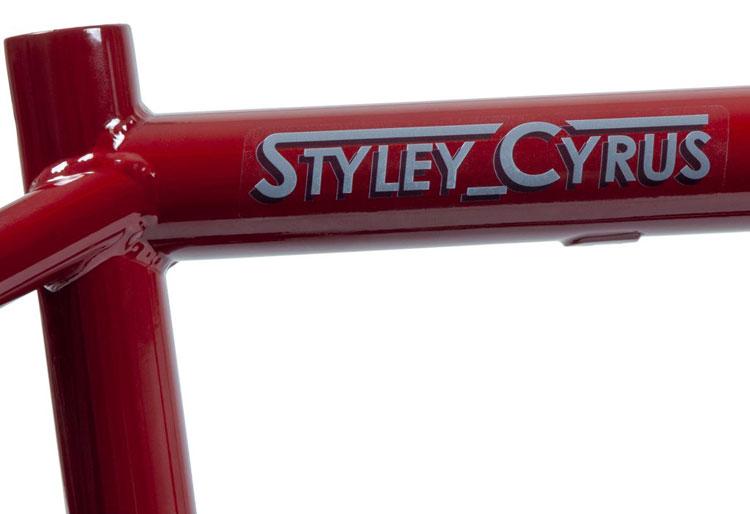 Federal Bikes Steven Hamilton BMX Frame 2019