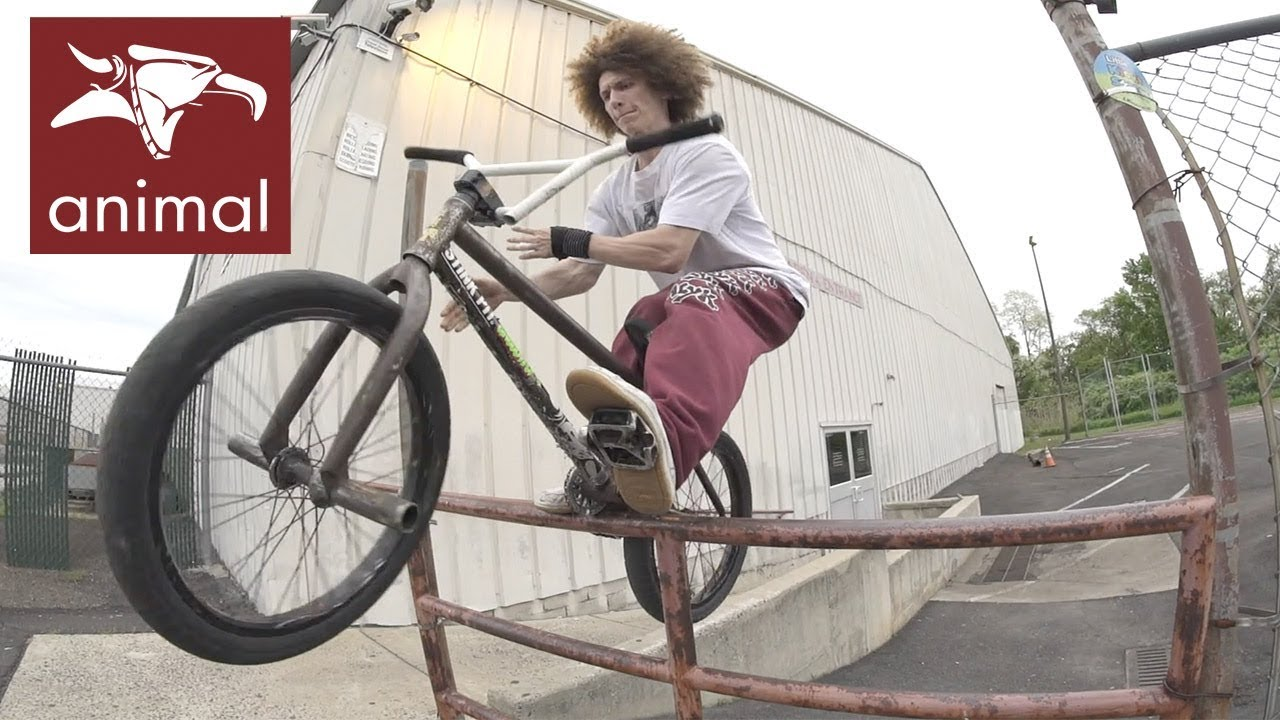 Animal Bikes Summer 2019 Promo BMX video