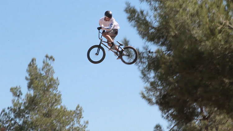 Flybikes BMX Sem Kok Raw Line