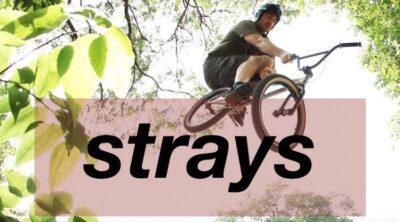 Strays 8 BMX