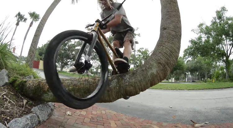 SM Bikes Dave Krone BMX video