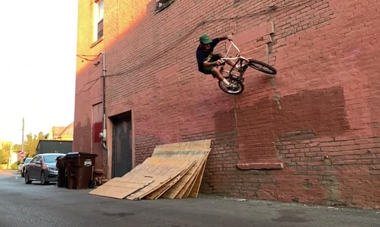 Animal Bikes Steven Hamilton Dusted